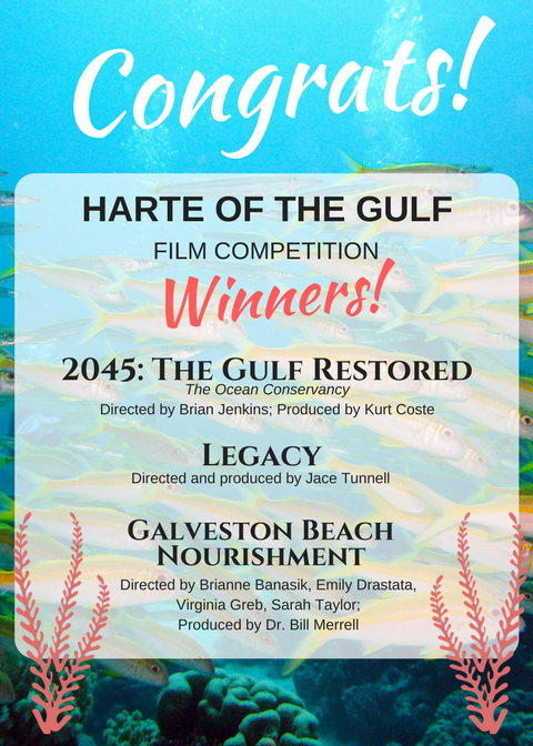 Harte of the Gulf film winners