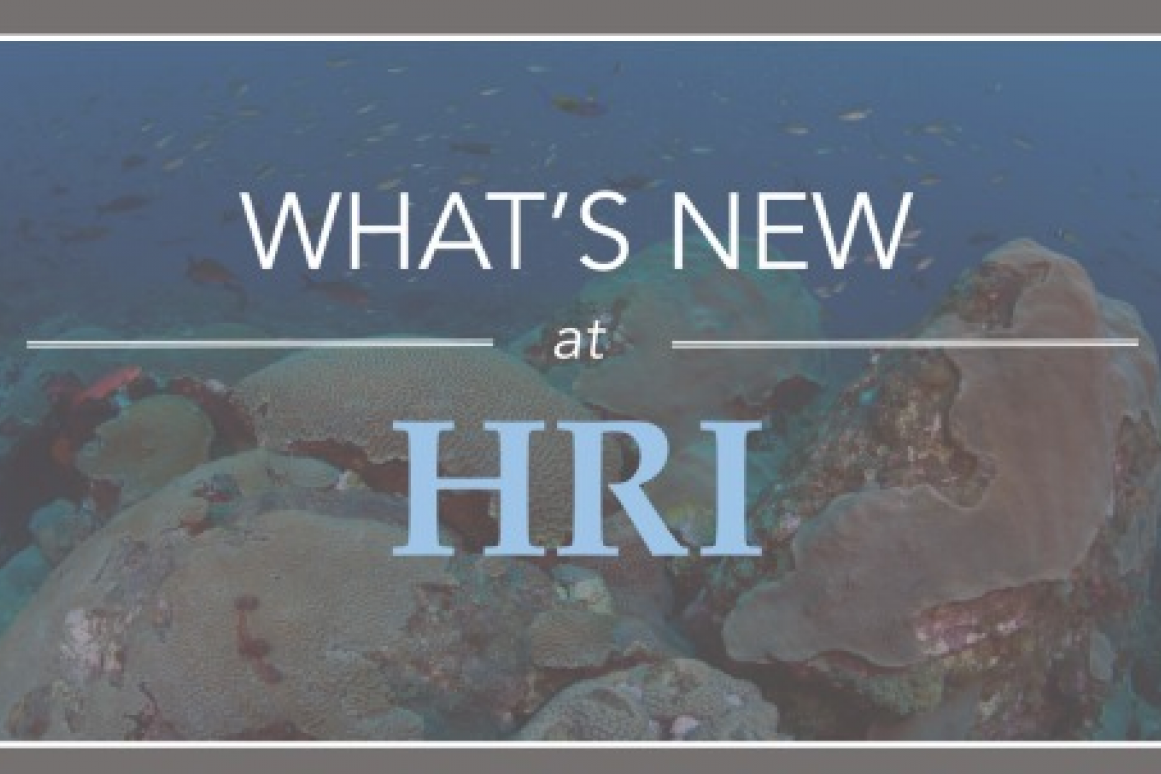 What's New at HRI
