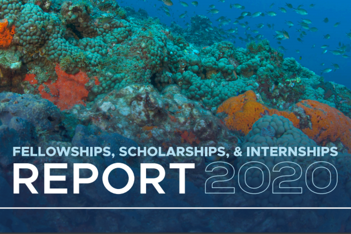 2020 Fellowships Report