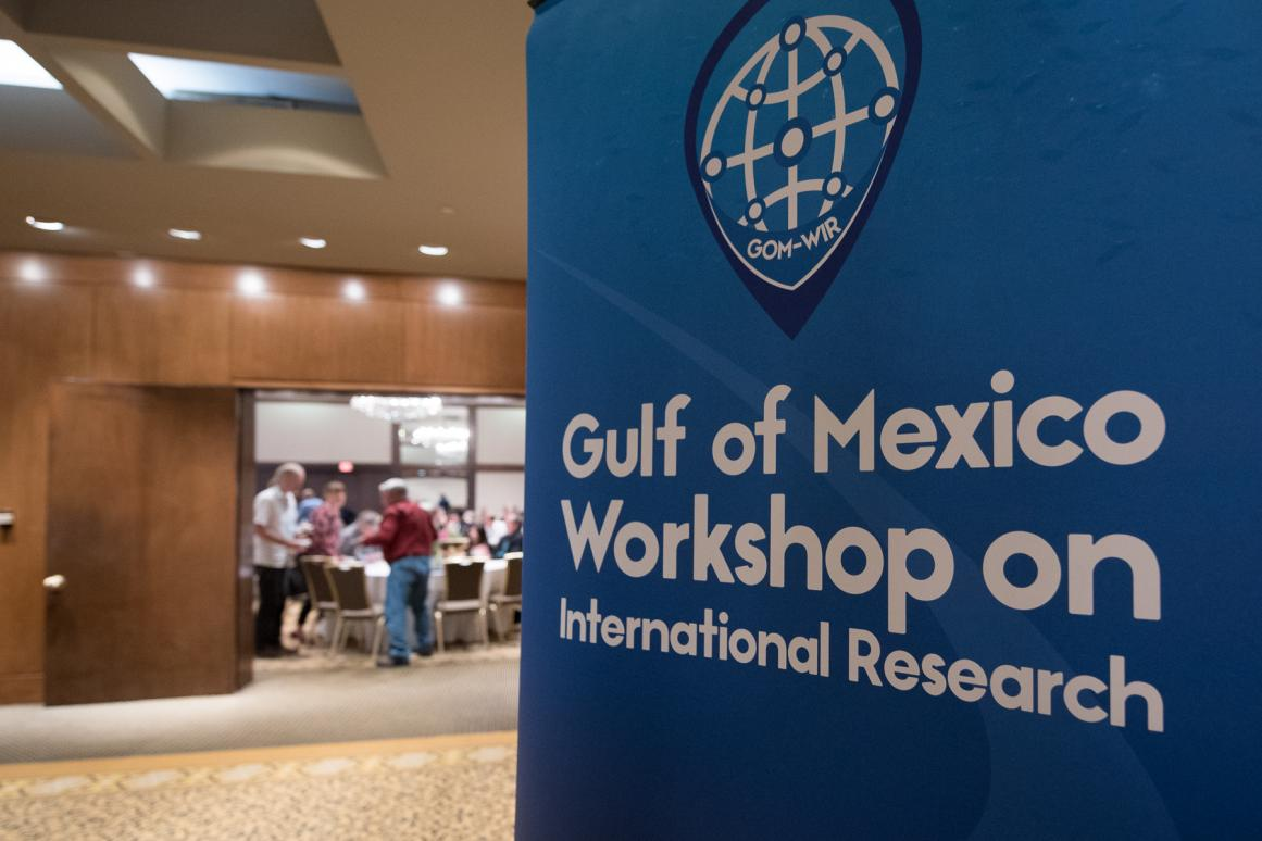 Gulf of Mexico Workshop on International Research