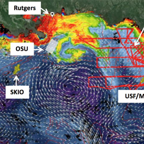 Gulf of Mexico data management system