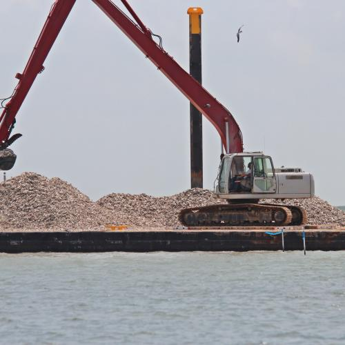 Oyster reef construction