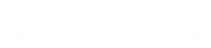 Hamman Foundation